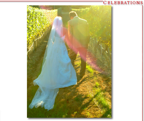 Bride & Groom - Vineyard Wedding North Fork Long Island New York