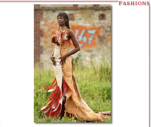 Women's High Fashion - Feather Dress Paris Suburb